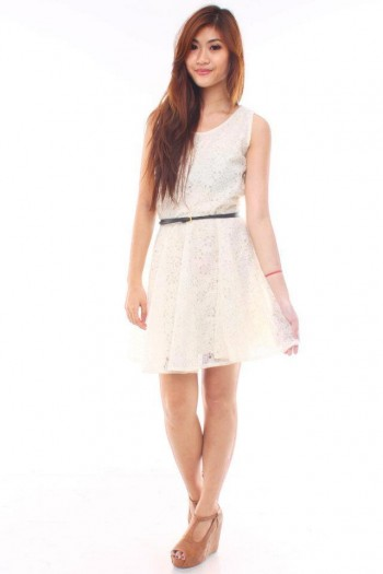 /601-2661-thickbox/lace-skater-dress.jpg