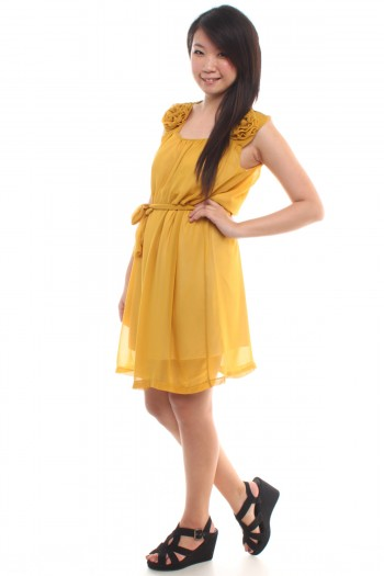 /85-406-thickbox/mustard-chiffon-dress.jpg