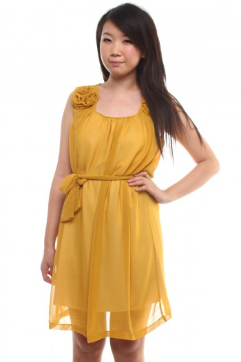 Mustard Chiffon Dress