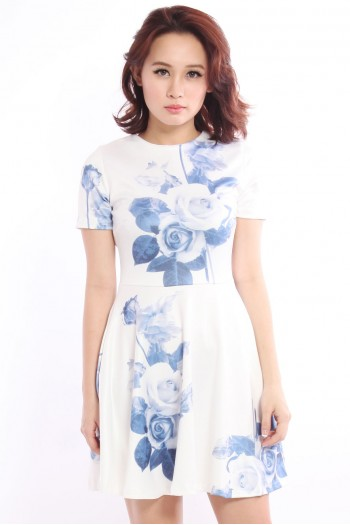 Rose Watercolour Skater Dress