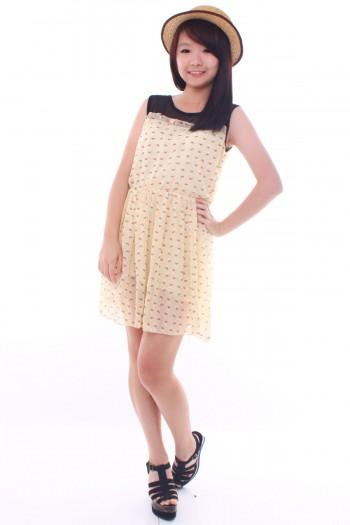 Printed Mesh Bib Dress